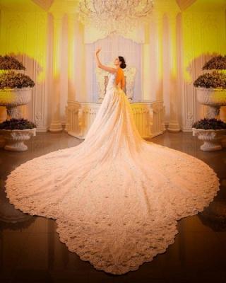 Luxury V Neck Strapless Lace Mermaid Wedding Dresses_4