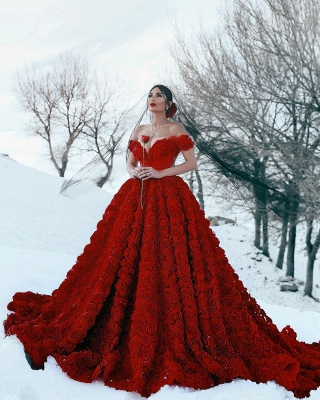 Off the Shoulder 3D Floral Printed Ball Gown for Girl Evening Maxi Gowns_8