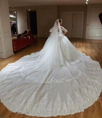 Princess Off The Shoulder Half Sleeve Applique Sequin Ball Gown Wedding Dresses_3