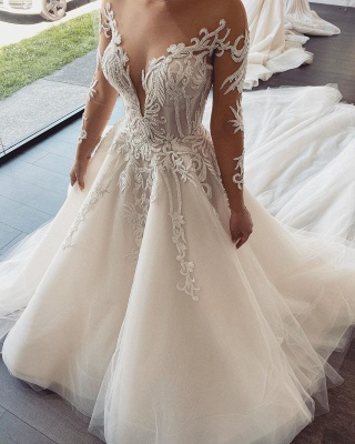Sexy Jewel Nude Sheer Back Long Sleeve Applique Pleated A Line Wedding Dresses_1