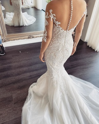 Elegant Jewel Long Sleeve Nude Sheer Back Applique Fitted Mermaid Wedding Dresses_2