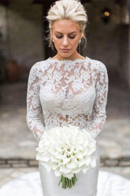 Elegant Long Sleeve Lace Mermaid Wedding Dresses | Fit And Flare Wedding Gown_1