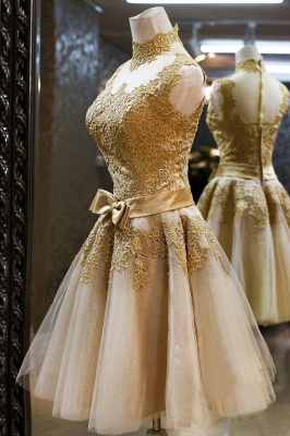 2021 Cocktail Dresses Sleeveless High Neck Lace Appliques Tulle Princess Homecoming Dresses_3