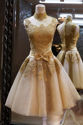 2021 Cocktail Dresses Sleeveless High Neck Lace Appliques Tulle Princess Homecoming Dresses_1