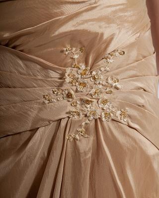 Absorbing V-Neck Floor Length Taffeta Applique Beading Mothers of Bride & Special Guests Dress_3