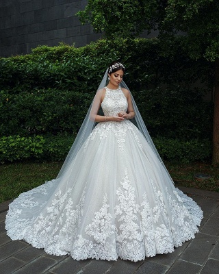 Gorgeous Sleeveless Backless Applique Pleated Puffy Ball Gown Wedding Dresses_2