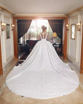 Amazing Ball Gown Wedding Dresses | Long Sleeves Sheer Back Bridal Gowns_3