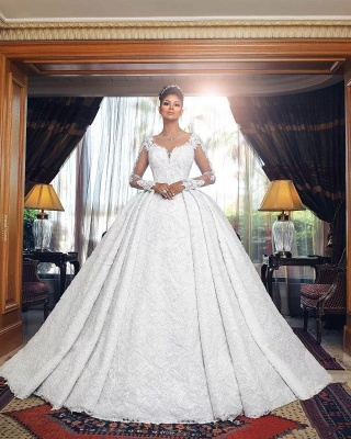 Amazing Ball Gown Wedding Dresses | Long Sleeves Sheer Back Bridal Gowns_2