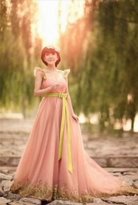 Sexy Pink Evening Dress Long Belt Chiffon Embroidery Party dresses Bridesmaid Dresses_2