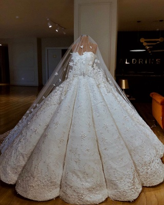 Luxury Lace Ball Gown Wedding Dresses | Sweetheart Sleeveless Long Bridal Gowns_2
